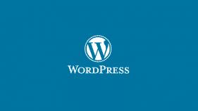 WordPress Eklentisiz Yazar Bilgi Kutusu